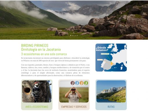 Web de turismo ornitológico de la Jacetania: Birding Pirineos